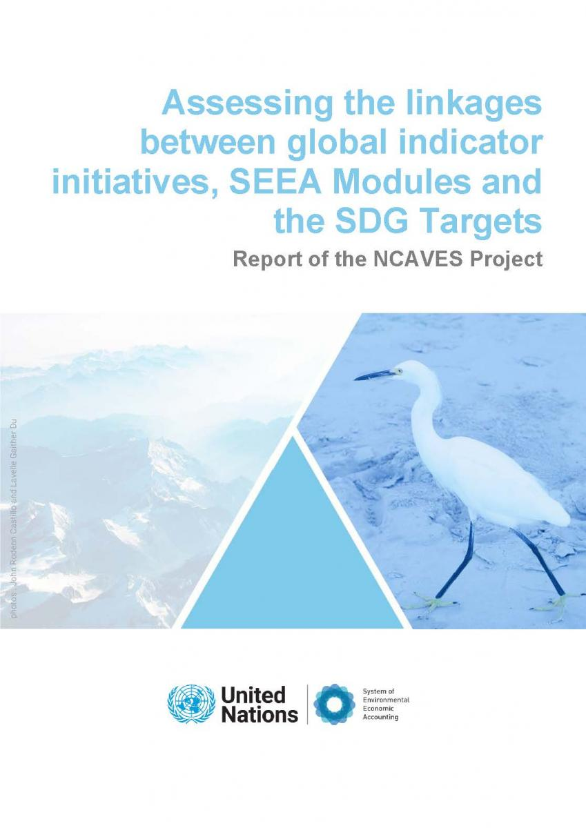 Assessing the linkages between global indicator initiatives, SEEA Modules and SDG Targets.